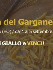 Festa Del Garganello